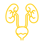 Pôle Genitau urinaire Polyclinique de Picardie
